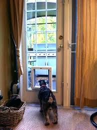 french doors with dog door built in pet back sliding glass patio i