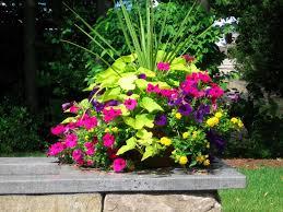 Stunning Container Flower Gardening  Wearefound Home DesignContainer Garden Ideas For Shade