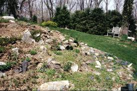 Small Picture Rock Garden Design Garden Ideas And Garden Designl simple front