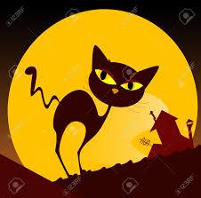 """Résultat de recherche d'images pour """"chat et soleil"""""""