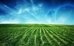 green grass field animated. Original Resolution Green Grass Field Animated