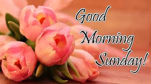 Sunday Good Morning Images Hd Download Sunday Good Morning