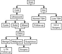 Thyroid Neoplasia Clinical Gate