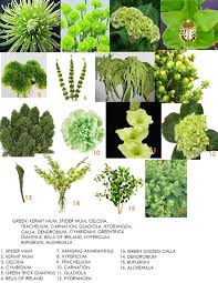 types of flowers in bouquets. green flower bridal bouquet : types for bouquets flowers of in n