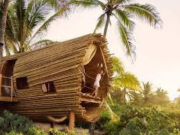 treehouse. Treehouse O