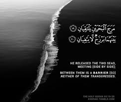 This ramadan you will find us by your side during ramadan mubarak preparations. 85 Beautiful Inspirational Islamic Quran Quotes Verses In English