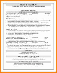 Affiliation In Resume Example Example Of Affiliation In Resume Examples of Resumes 18
