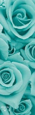 papel de parede clássico marraskesh em tons de azul turquesa e gold para quartos e sala. 660 Ideias De World Turquesa Em 2021 Pontos De Ferias Papel De Parede Turquesa Tiffany E Co