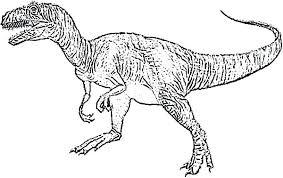 Dinosaur Skeleton Coloring Pages At Getcolorings Com Free Printable