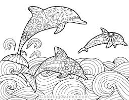 Cute Baby Dolphin Coloring Pages Unique Pin By Muse Printables On
