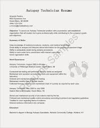 30 Sample Tech Resume Template Gallery Popular Resume Example
