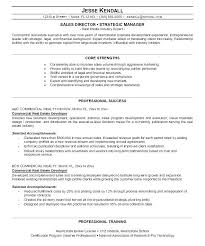 Real Estate Resumes Examples Job Description For Resume Real Estate ...