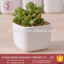 office flower pots. office desk flower pots suppliers and manufacturers at alibabacom s