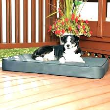 Best Elevated Outdoor Dog Bed Pet Espresso Model – cequami