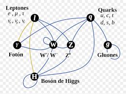 Interacciones Del Modelo Estándar De La Física De Particulas - Standard  Model, HD Png Download - vhv
