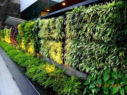 Small Picture Vertical Gardening Systems Vertical Garden Concept for Buildings