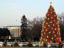 I have realized that Christmas trees can be SO pretty!! So here is my list  of the top 10 most prettiest Christmas trees!