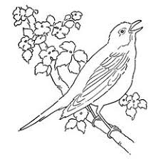 line art coloring page bird with blossoms graphic fairy tea towel embroidery bird line drawingbird