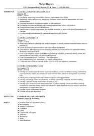 audit readiness resume samples velvet jobs