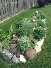 Rock garden now add some grasses and make it bigger love this -for around my