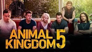 Animal Kingdom Season 5: Expected ...