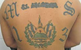 Silent No Longer Brentwood Residents Detail Ms 13s Control