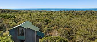 The Treehouse  61 Monash Ave Great Mackerel Beach NSW 2108 Treehouse Accommodation Nsw