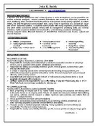 realtor resume