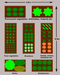 Small Picture Raised Bed Vegetable Gardens Plan For A Large Garden