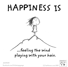 Happiness Is Feeling The Wind Playing With Your Hair Happiness Is