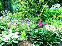 perennial garden ideas perennial garden design perennial