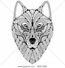 Drawn Wolf Hand Drawn Wolf Vector Photo Free Trial Bigstock