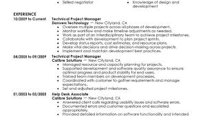 Information Technology Resume Template Operations Manager Resume