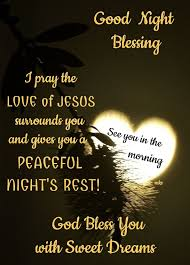 Good Night Prayer Quotes Magnificent Pin By Fuzzball On Goodnight Pinterest Night Quotes Blessings