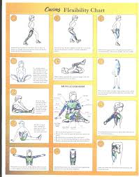 Explanatory Warm Up Cool Down Exercise Chart Warm Up Cool