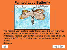 Metamorphosis: Butterflies and Moths Click on a picture to learn more about  the person. Click on the home button to return back to this page. Use the.  - ppt download