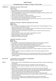Security Resume Sample Endpoint Security Resume Samples Velvet Jobs 10