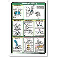 Bench Chart Algra Fitnus Chart Bench Press Instruction Card Bench