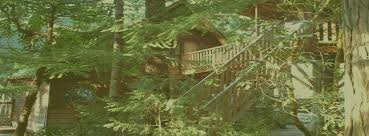 tree house pictures. Tree House Pictures