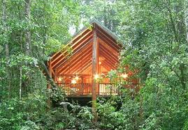 The Canopy Rainforest Treehouses And Wildlife Sanctuary  Cairns ToursThe Canopy Treehouses