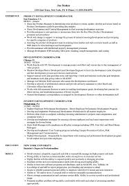 Development Coordinator Resume Samples Velvet Jobs