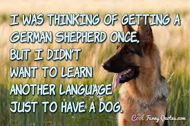 cute dog quotes and sayings. Exellent Sayings I Was Thinking Of Getting A German Shepherd Once But Didnu0027t Want In Cute Dog Quotes And Sayings