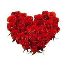 5 Tips Memilih Buket Bunga Mawar Terbaik untuk Valentine