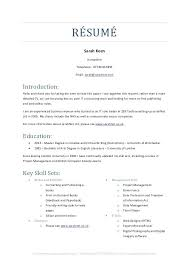 Skill Set Resume Unique Skill Sets For Functional Resumes Resume Set Spacesheepco