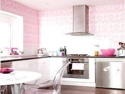 kitchen decorating kitchen decor pink kitchen decor kitchen decorating hot pink kitchen appliances pink regarding x kitchen 1950s inspired kitchen ideas