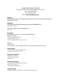 Examples Of Resumes 13 Basic Computer Skills Resume Job And