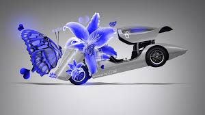 holden hurricane flowers butterfly car