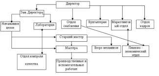 Банк Рефератов Курсовая работа Информационная система для  Рис 1 Функциональный тип организационной структуры