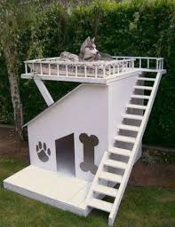 Small Picture Brilliant Garden Ideas With Dogs For O Design Decorating