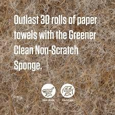 scotch brite greener clean natural fiber non scratch scrub sponge outlast paper towels